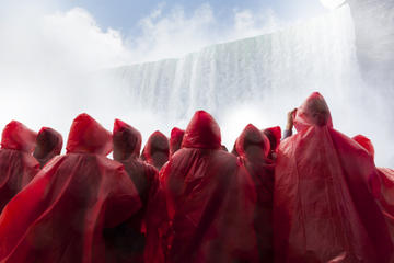 Niagara Falls Small-Group Tour from...