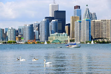 Toronto Small-Group City Tour