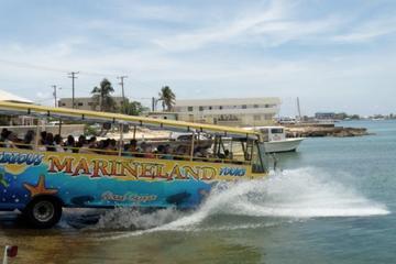 水陸両用のバスシティツアー(ランチ付)