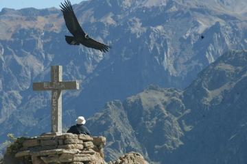 Excursão privada de 2 dias: Cânion do Colca saindo de Arequipa