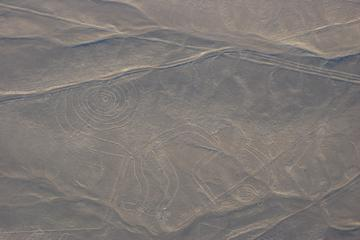 Nazca Lines Tour from Lima Including Lunch