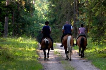 2-Day Horse Riding Tour in Sredna Gora from Plovdiv