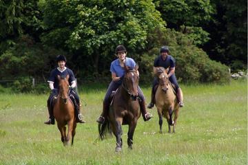 Fullday Horse Riding in Sredna Gora