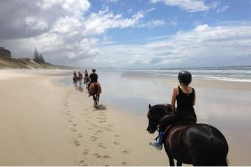 HORSE-RIDING PICNIC