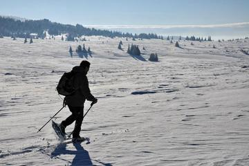 One day hiking with snowshoes on Vitosha