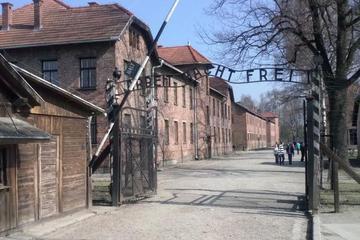 Auschwitz- Birkenau Tour from Krakow with private transport
