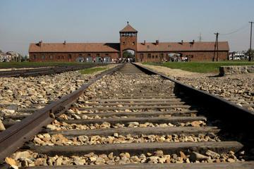 Auschwitz-Birkenau y minas de sal de Wieliczka en un día