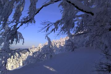 Private 3-Day Slovakia Winter Break...