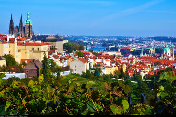 Private Full-Day Prague Tour from Vienna