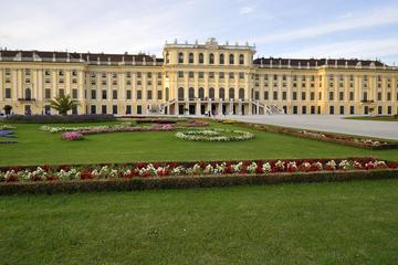 Recorrido privado por la ciudad de Viena con visita al Palacio de...