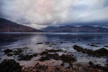 Excursión de un día al Castillo de Stirling, el lago Ness y las...