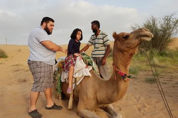 Osian Adventurous Desert Experience
