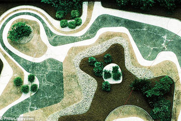 Sitio Roberto Burle Marx Private Tour