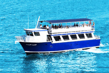 Crucero turístico por la Bahía de...