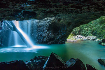 Springbrook National Park, Natural Bridge Hiking Tour from the Gold Coast