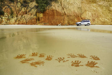 The Great Beach Drive: 4WD Tour...