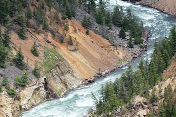 Day Trip Self-Guided Tour of Yellowstone Upper Loop from Cody near Cody, Wyoming