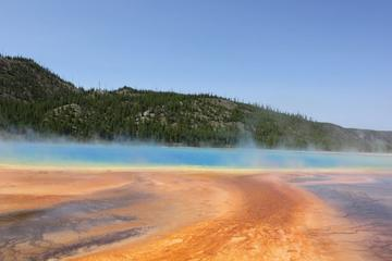 Yellowstone Upper and Lower Loop Tours