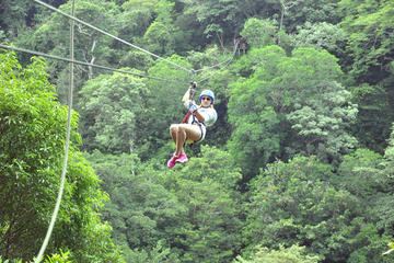Borinquen Combo Horseback Riding and Canopy Tour