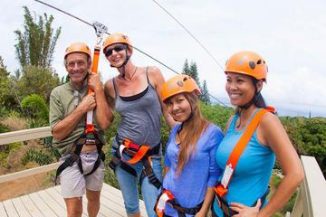 7 Line Jungle Zipline Tour On Maui