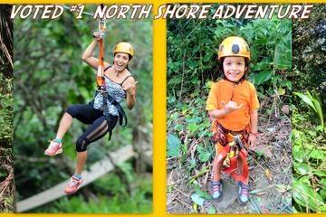 Maui Jungle Zipline Tour