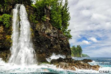 究極のハワイの滝&イルカ ボート ツアー
