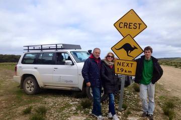 Tour di un giorno di Kangaroo Island in fuoristrada - Seal Bay