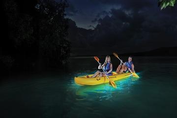 Recorrido nocturno en kayak por la...