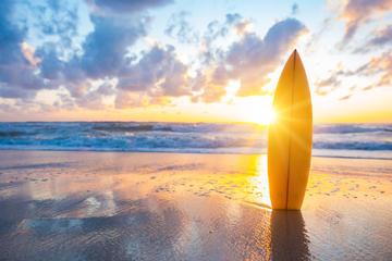 Surfboard Weekly Rental