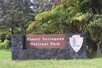 ハワイ火山国立公園、滝、ヒロを巡るメルセデス ツアー(客席定員11名)