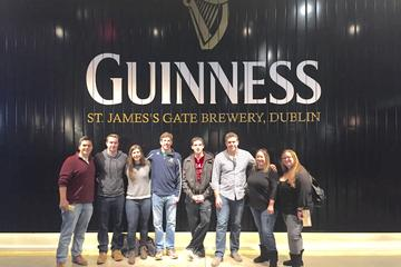 Temple Bar Highlights Tour with Guinness and Whiskey Tasting from...
