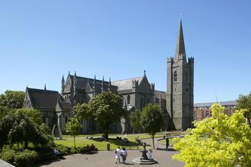 Visite des monuments de Dublin incluant la cathédrale Saint-Patrick...