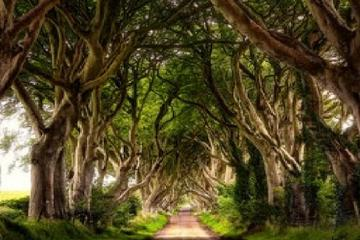 3-Day Northern Ireland Tour from...
