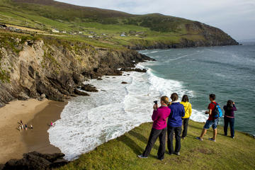 4-Day South West Ireland Tour from...