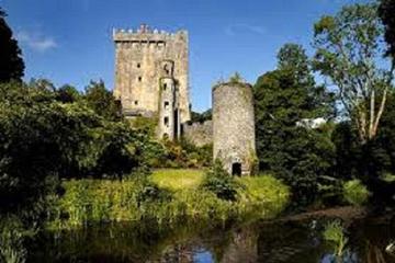 Excursão de um dia ao Castelo de Blarney saindo de Dublin, incluindo...