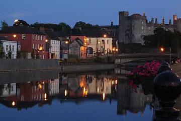 Excursion d'une journée Kilkenny et Wicklow au départ de Dublin
