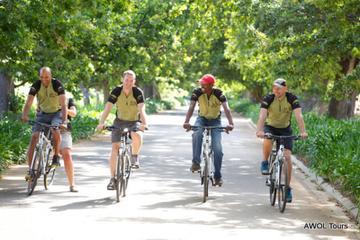 Private Cycling Tour: Wellington Winelands from Cape Town
