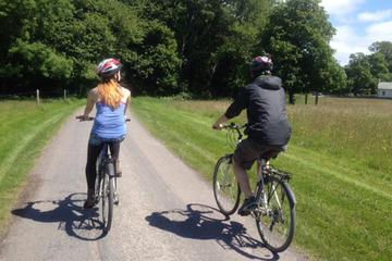 Killarney National Park Cycling Tour