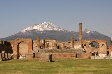 Full Day Small Group Pompeii Tour from Sorrento with Local Wine Tasting