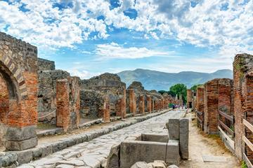 Pompeii and Mt. Vesuvius Private Tour from Positano or Amalfi