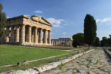 Private excursion to Paestum and Buffalo Cheese Factory from Sorrento