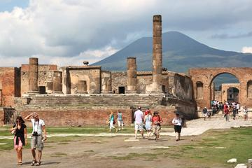 Semi-private: Pompeii & Herculaneum full day