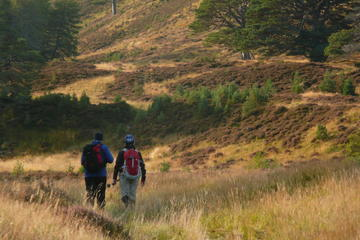 3 Day Tour: Highlands of Scotland Whisky and Hiking