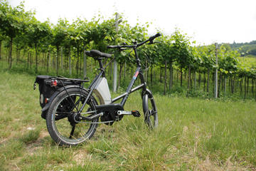 E-bike Tour and Wine Tasting