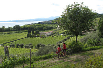 E-bike Tour: Lake Garda and Bardolino Wine Tasting
