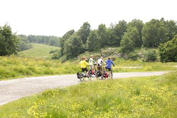 E-Bike Tour of Lessinia from Verona