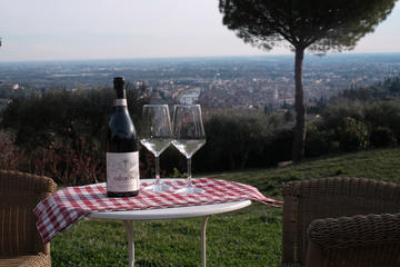 Wine with panorama