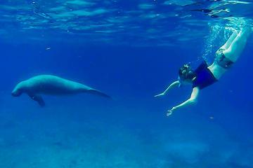 Shore Excursion Belize Barrier Reef...
