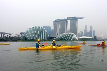 Kallang Kayak Tour