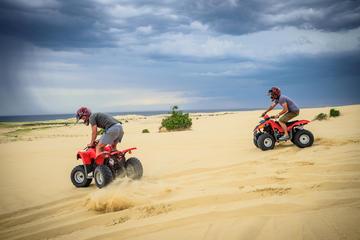 Quad Bike Combo Tour with Sand Dune Riding and Safari Tour